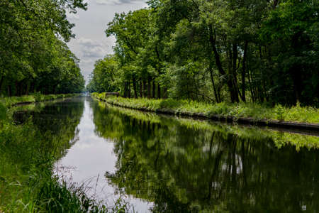 Waterways in Belgium, manmade canal with oak trees alley with bicycle and walking path