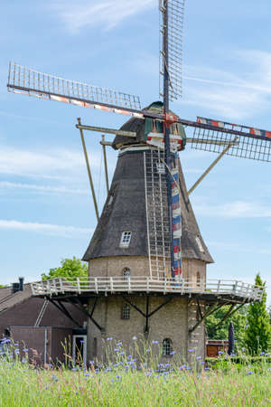 Dutch grain wind mill and corn field with blue flowers in summer, Oerle, Netherlands Standard-Bild - 124905382