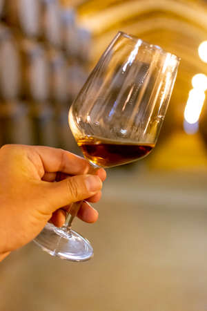 Tasting of fortified dry or sweet marsala wine in vintage wine cellar with old oak barrels in Marsala, Sicily, Italy, wine glass with wine Imagens
