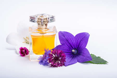 Creation of perfume essence, summer flowers sweet light fragrance, perfume bottle and colorful aromatic flowers isolated close up copy space Standard-Bild