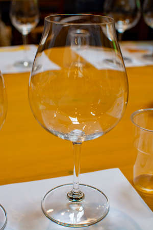 Professional wine tasting event in winery, sommelier course, clean empty wine glasses for different wines