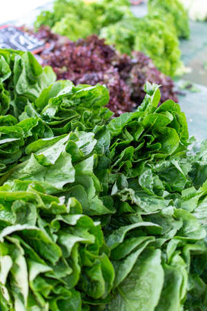 Farmer market in Nafplio, Greece, new harvest of green salad lettuce vegetable, fresh and healthy organic food, food background