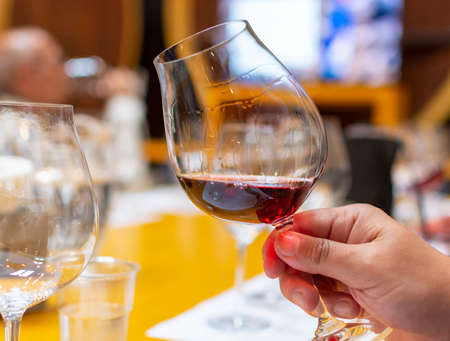 Professional wine tasting, sommelier course, looking at red dry wine in wine glass close up