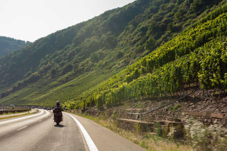 Driving car on famous green terraced vineyards in Mosel river valley, Germany, production of quality red and  white, riesling