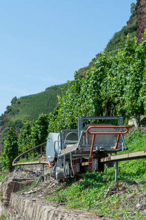 Special machine equipment for works on vertical  terraced vineyards in Mosel river valley, Germany, production of quality white and red wine, riesling Stock fotó
