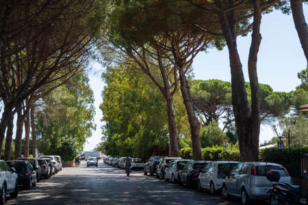 Street parking in small italian town under old green pine trees in shadow
