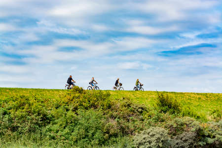 Four people riding on bicycles in sunny day in Netherlands, sport concept