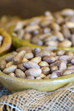 Clay bowls with dried pistachio nuts in shell close up