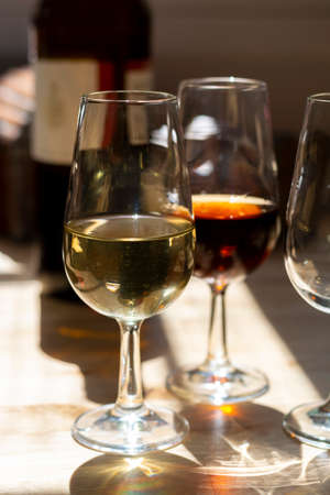 Sherry wine tasting in wine cellars, selection of different jerez fortified wines from dry to very sweet in glasses, Jerez de la Frontera, Andalusia, Spain Stok Fotoğraf