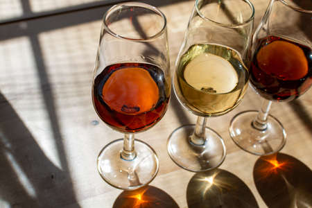 Sherry wine tasting in wine cellars, selection of different jerez fortified wines from dry to very sweet in glasses, Jerez de la Frontera, Andalusia, Spain Stock Photo