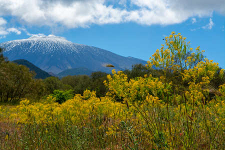 View on active stratovolcano Mount Etna on east coast of island Sicily, Italy in spring