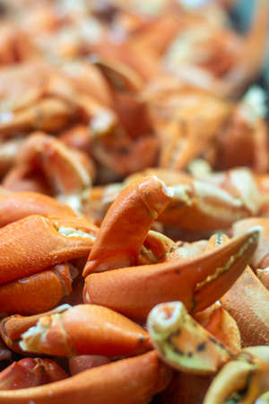Tasty sea food, crabs and crab clams in fish shop in Andalusia, Spain close up