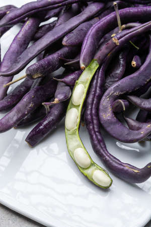 Magic colorful purple beans which turn Green after cooking, fresh healthy vegetables close up