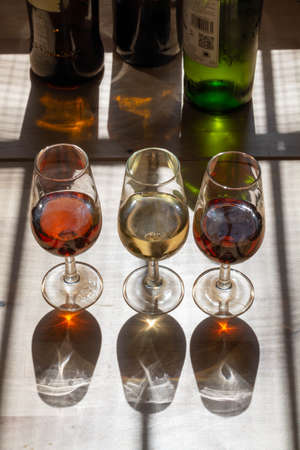 Sherry wine tasting in wine cellars, selection of different jerez fortified wines from dry to very sweet in glasses, Jerez de la Frontera, Andalusia, Spain Stockfoto