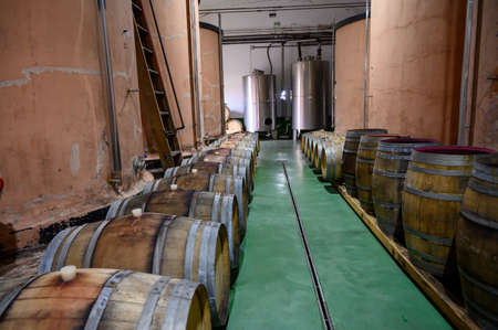 Traditional winery bodega on south of La Palma island with steel or concrete casks and wooden barrels in underground wine cellars, wine production on Canary Islands, Spain