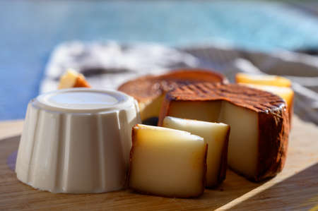 Cheese collection, piece of Spanish manchego cheese made from cow milk with red paprika and soft white cheese close up