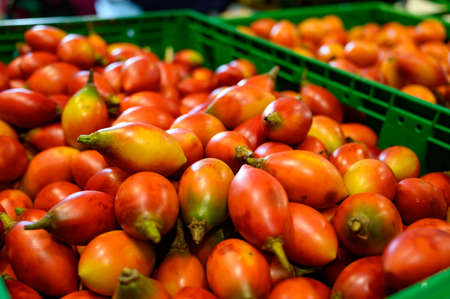 Tamarillo, egg-shaped edible fruit, also called tree tomato, tomate de arbol, tomate andino, tomate serrano, tomate de yuca close up