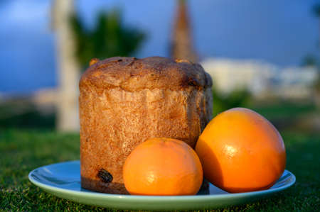 Sweet fresh baked panettone fruit cake with fruits op plate on spring green grass 写真素材 - 138836336