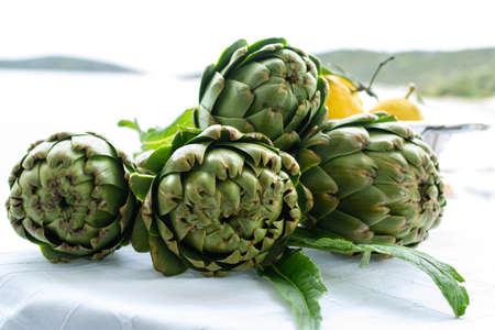 Cooking dinner with fresh green artichokes heads, tasty vegetarian food, on open kitchen with sea view