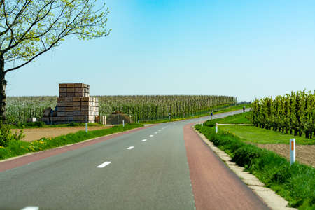Asphalt road and spring landscape with farmers plowed fields and green grass, nature background 스톡 콘텐츠