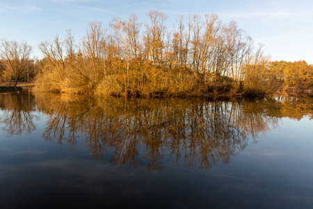 Mirror forest lake with reflection in winter sunny day, Kempen regio in North Brabant, Netherlands