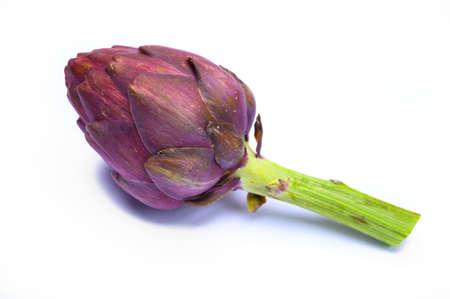 Head of raw fresh purple romanesco artichoke vegetable ready to cook