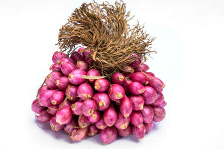 Bunch of high quality small red shallot sambar onions from India isolated