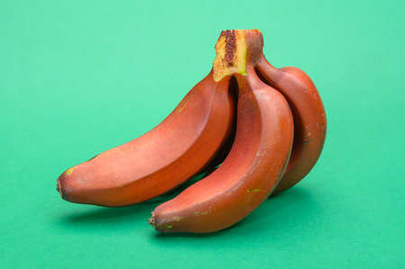 Bunch of ripe red bananas close up on green background