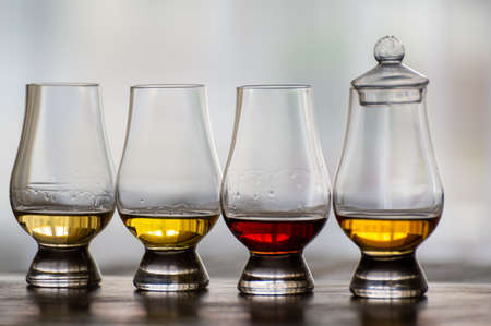 Tasting of flight of Scotch whisky from special tulip-shaped glasses on distillery in Scotland, UK close up
