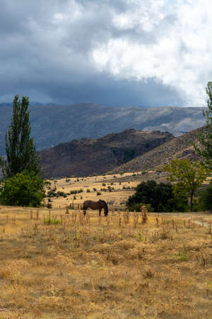 Landscapes of National park Sierra Nevada mountains near Malaga and Granada, Andalusia, Spain in summer