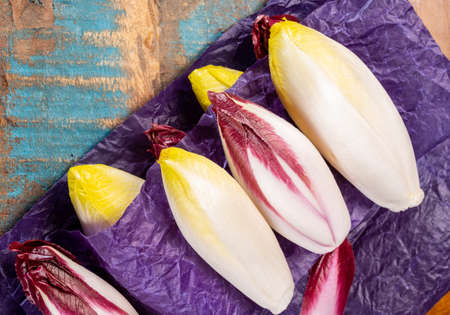 Fresh organic Belgian endivi or green and red chicory lettuce close up in violet protective paper Archivio Fotografico