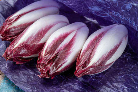 Fresh organic Belgian endivi or red chicory lettuce close up in violet protective paper