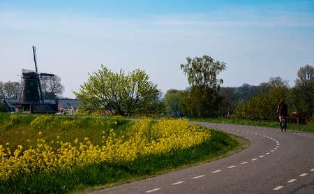 One woman ride bicycle in spring day on dam in Betuwe, Gelderland, Netherlands