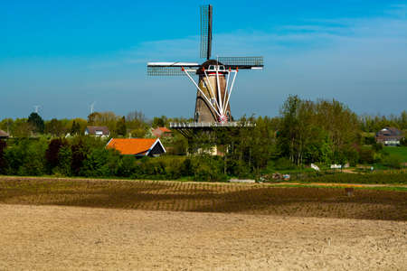 Small Dutch village and fruit orchards with spring blossom along dam in Betuwe, Netherlands in sunny day