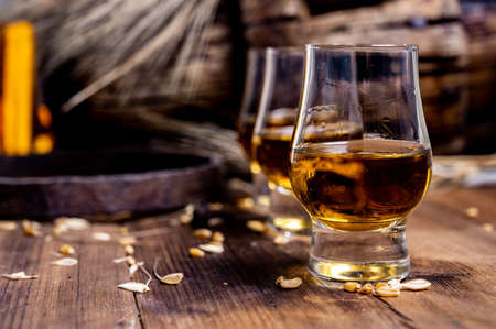 Small tasting glasses with aged Scotch whisky on old dark wooden vintage table with barley grains close up Reklamní fotografie