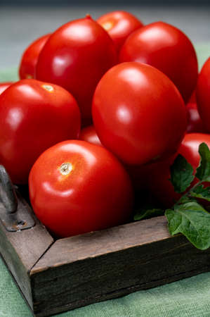 New harvest of fresh ripe red tomatoes  close up