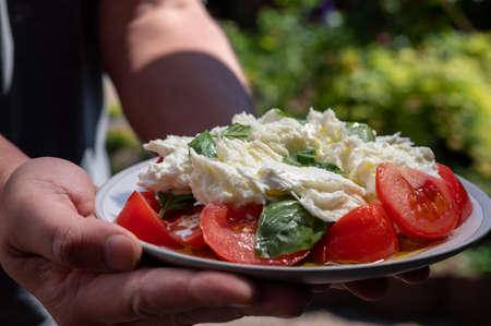Waiter in cafe holding in hands fresh vegetarian caprese salad made from buffalo mozzarella cheese, fresh basil, tomatoes, olive oil. Italian food served outdoor on terrace in sunny day Imagens