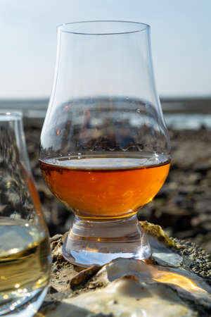 Tasting glass of Scotch whisky and sea shore background during low tide, smoky whisky pairing with oysters