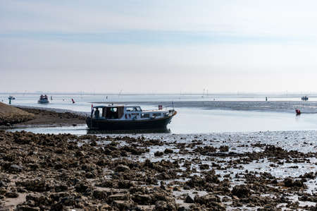 Coastline in zeeuwse village Yerseke with famous oysters and mussels wells during low tide, Zeeland, Netherlands