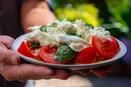 Waiter in cafe holding in hands fresh vegetarian caprese salad made from buffalo mozzarella cheese, fresh basil, tomatoes, olive oil. Italian food served outdoor on terrace in sunny day 写真素材