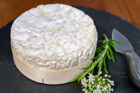 French cheeses collection, piece of matured camembert cow milk cheese with white mold from Normandy Banque d'images