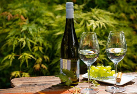 Quality wine tasting on winery in Mosel wine redion in Germany, two glasses and one bottle of riesling white wine served outdoor in garden in sunny day 写真素材 - 151109553