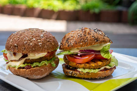 Fresh tasty meat free vegetarian burger made from organic ingredients close up Reklamní fotografie