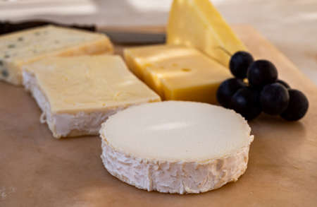 French cheese collection on marble board, emmental, carre de aurillac, petit cantal AOP Jeune, buche chevre and brie