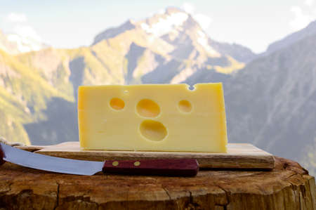 Cheese collection, French emmental de savoie cheese with round holes served outdoor in Savoy region, with Alpine mountains peaks in summer on background