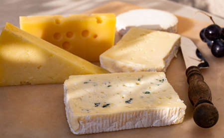French cheese collection on marble board, emmental, carre de aurillac, petit cantal AOP Jeune, buche chevre and brie 写真素材 - 155254170