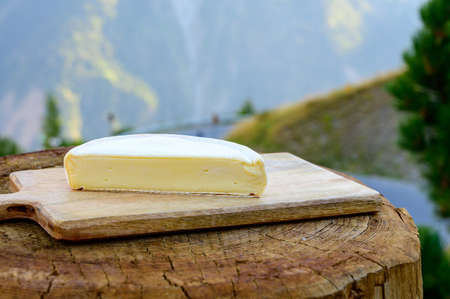 Cheese collection, French reblochon de savoie gratin cheese served outdoor with Alpine mountains peaks in summer on background