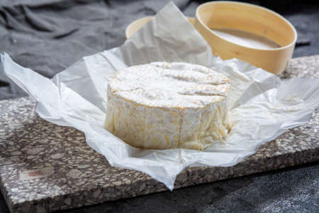 Cheese collection, French soft Camembert or Normandy cheese made from cow milk in region Normandy, France close up