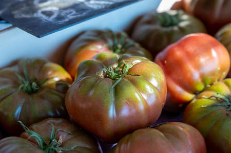 Assortment of french salad tomatoes, new harvest of big heirloom tomatoes on market in Provence, France in sunny day