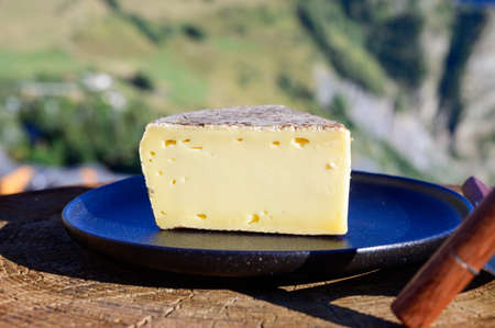 Cheese collection, French tomme de savoie or tome des bauges cheese served outdoor with Alpine mountains peaks in summer on background